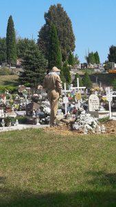 Zwalczanie gniazda Os na cmentarzu