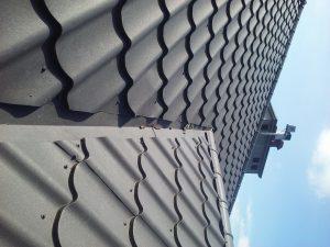 Odchody kuny na dachu